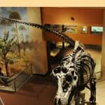 where to see dinosaurs with kids