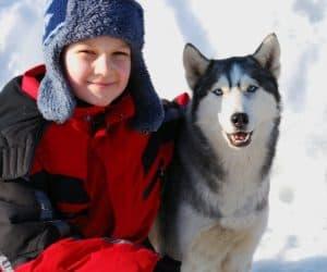 Family Dog Sledding