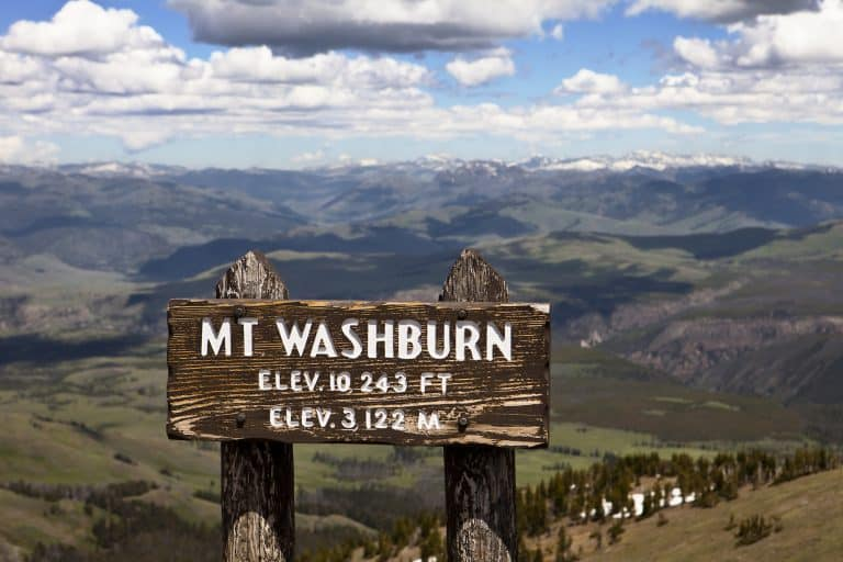 Best hikes in Yellowstone Mt Washburn