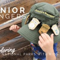 Junior Ranger Program with kids