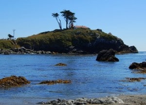 5 Must Sees for Families on California's Redwood Coast 1