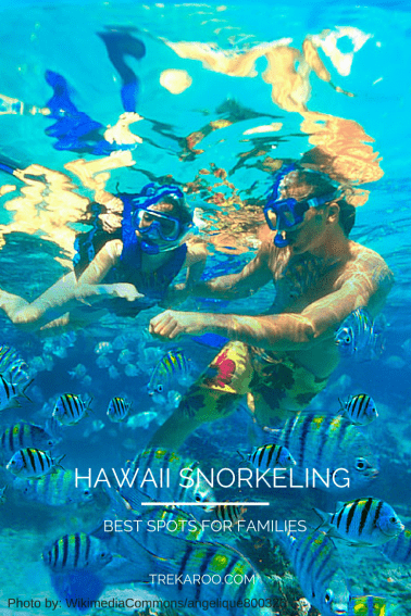Family-friendly-snorkeling-on-hawaii