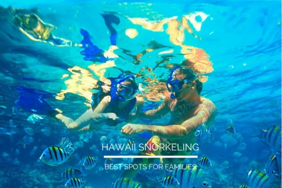 snorkeling in hawaii with kids