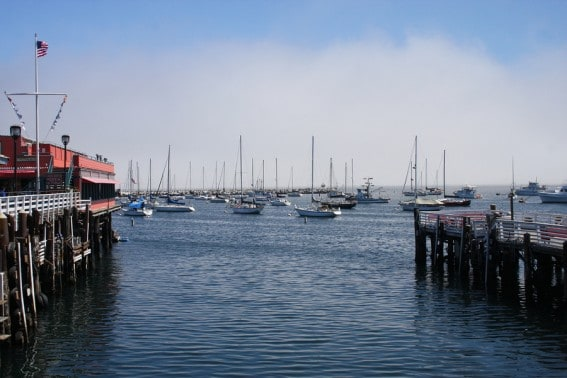 Monterey's fisherman's wharf, a great launching spot for whale watching excursions