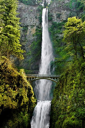 Multnomah Falls- Photo by: Flickr/Odalaigh