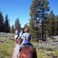 Jackson horseback riding