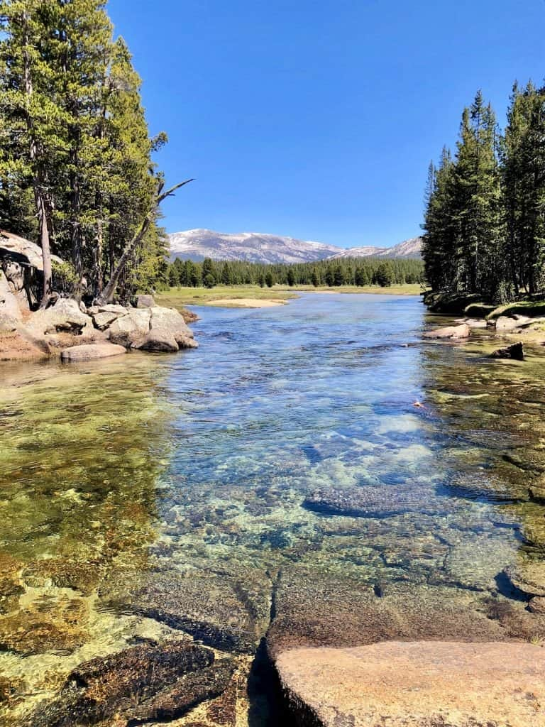 Tuolumne River looking toward Tuolumne Meadows