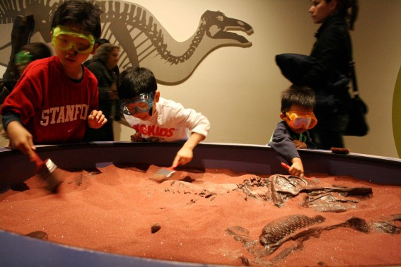 excavating Royal Ontario Museum Toronto with Toddlers