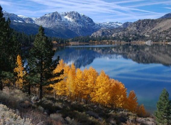 California Fall Color