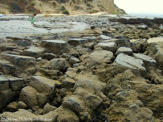 Crystal Cove Tide Pools