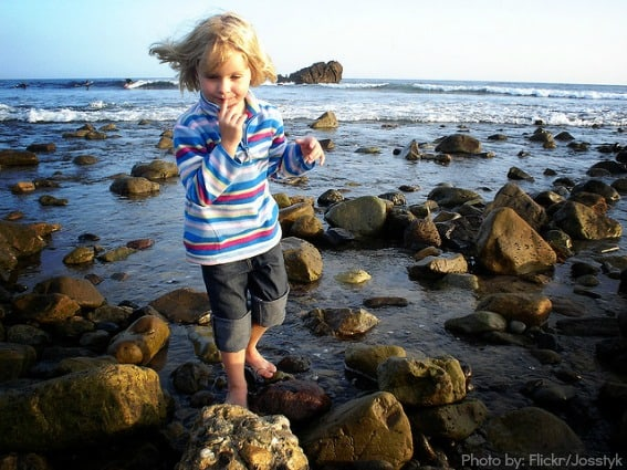 Leo Carrillo tide pools