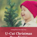 U-Cut Christmas Tree Farms: Cutting Down Your Own Tree 1