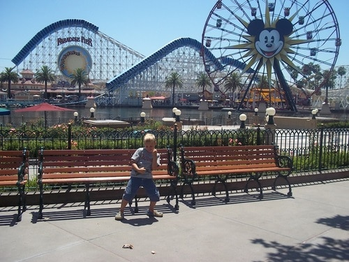 The Disneyland Resort with school-aged kids: What not to miss (by age) 1
