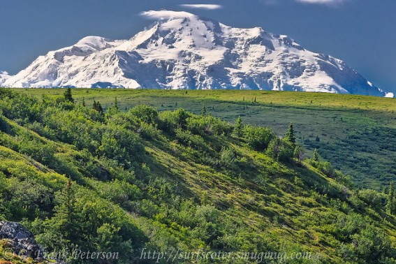 Top 10 Things for Families to Do in Alaska 10