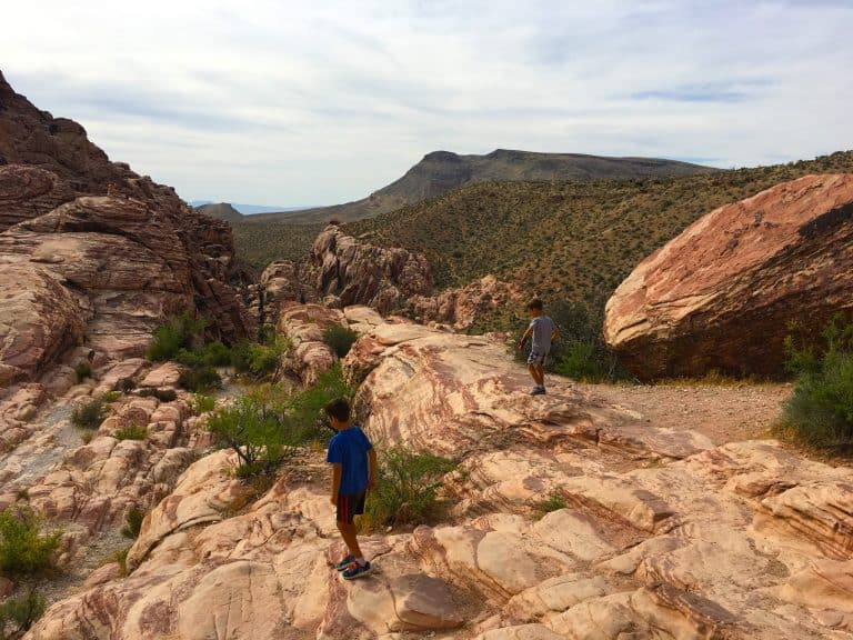 red rock canyon national conservation area things to do in nevada