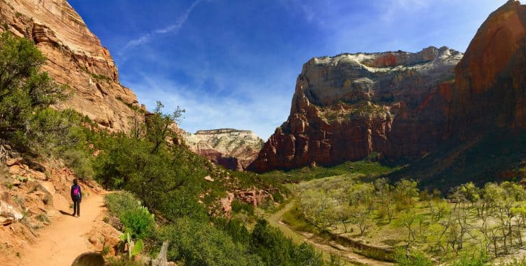 things to do in utah zion national park