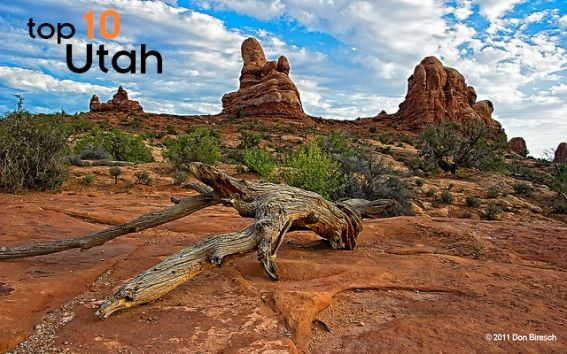 top 10 things to do with kids in utah