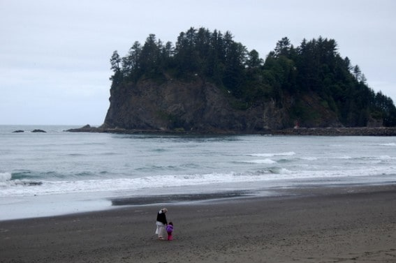 Exploring the Olympic Coast with Kids 4