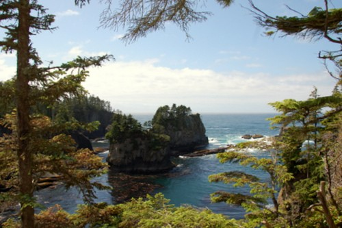 Exploring the Olympic Coast with Kids 8