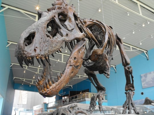 Top 10 Science and Technology Museums 5