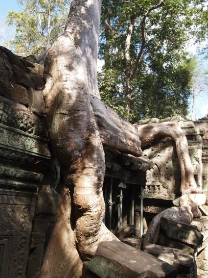 Cambodia: Angkor Archeological Park Through the Eyes of Young Kids 15