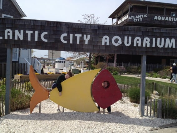 Atlantic City City with Kids - Aquarium