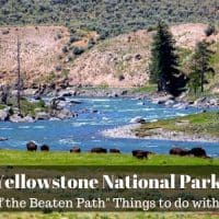Yellowstone National Park with Kids: 5 off the beaten path things to do