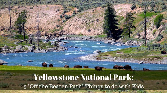 """Five """"Off the Beaten Path"""" Things to Do in Yellowstone ..."""