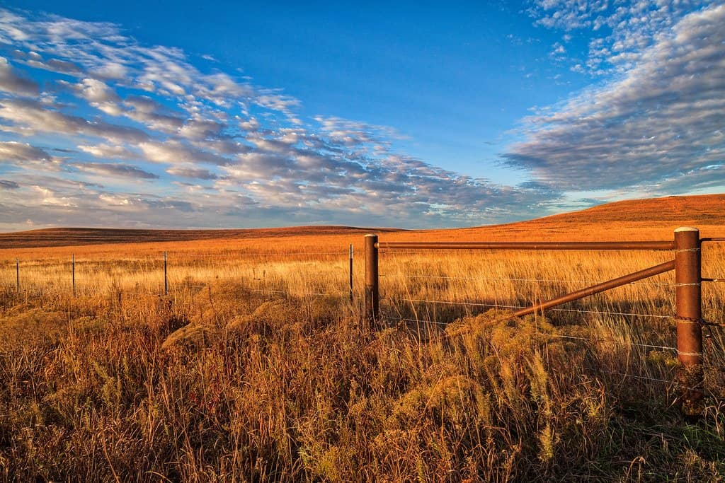 Tallgrass Prairie kansas photo