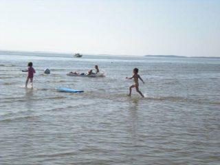 frolick bayside Cape Cod