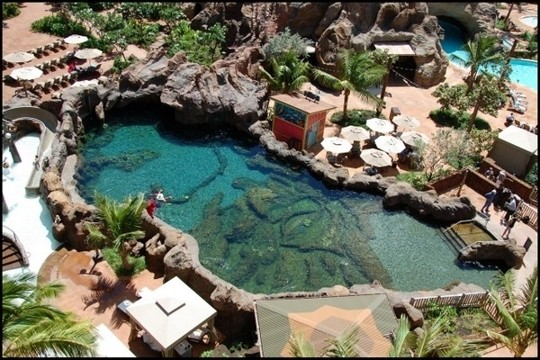 best hotel pools alani