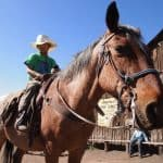 Dude Ranch Vacations: Tarryall River Ranch – Hospitality at it's Best 5