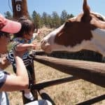 Dude Ranch Vacations: Tarryall River Ranch – Hospitality at it's Best 11