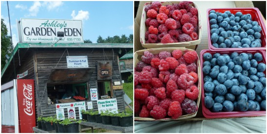 Ashley's Garden Eden Fruit Stand In Vermont