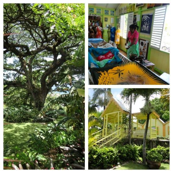 kid friendly island vacations: Caribelle Batik on St Kitts collage