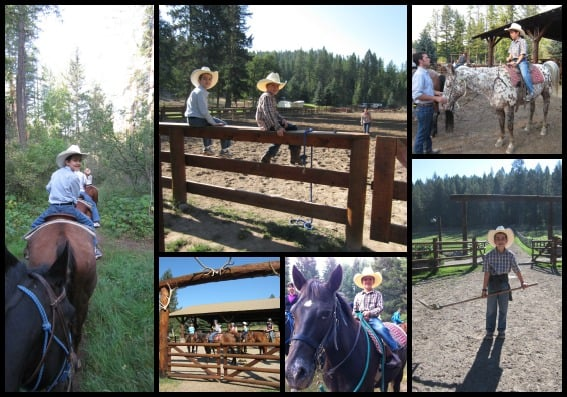 Horses Flathead Lake Lodge Collage