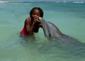 Half Moon Dolphin Cove Jamaica