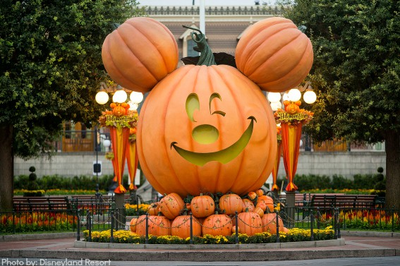 Explore Halloween at Disneyland with your family; the park is filled with fun and beautiful decor!