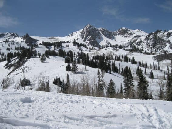 Snowbasin Skiing