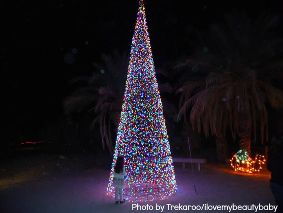 Palm Springs WildLights Light display holiday events in palm springs