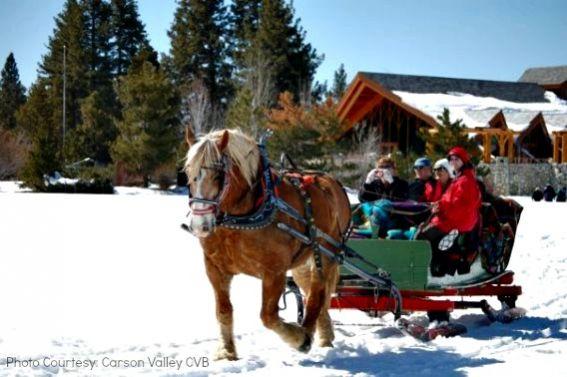borges-sleigh-Gardnerville-Nevada-Christmas