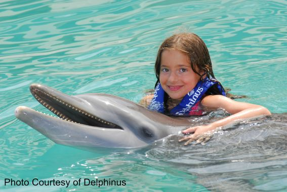 Dolphin at Delphinus, Cancun, Mexico Photo Courtesy of: Delphinus Travel with kids