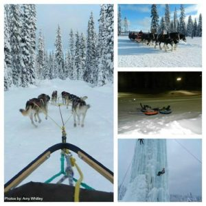 Big White Activities- Much more to do than just Skiing
