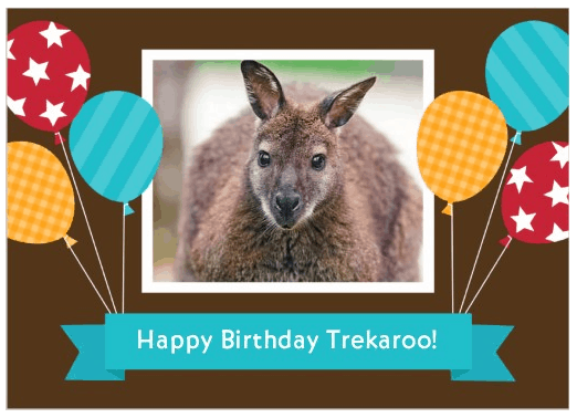 Family Travel- Happy Birthday to Trekaroo