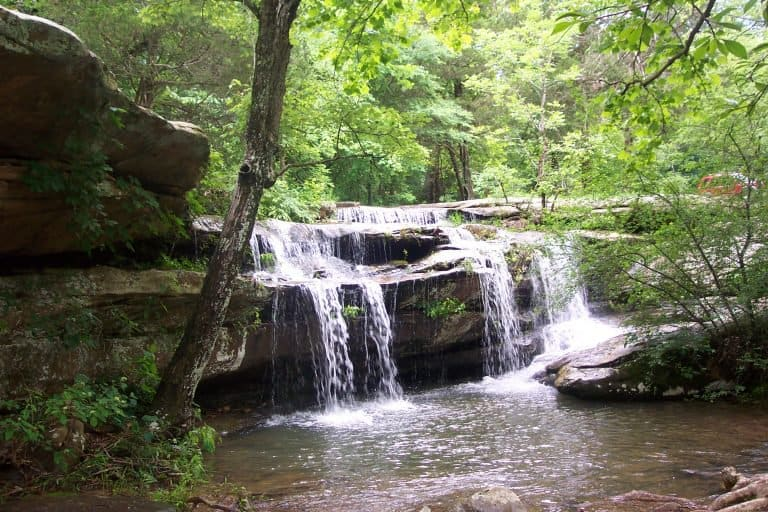 Places to visit in Illinois with kids Shawnee National Forest