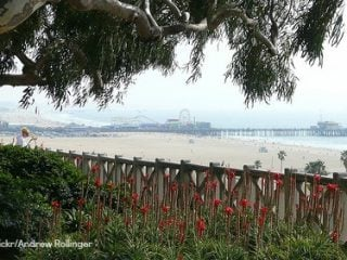 Palisades Park Santa Monica Family