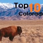 Top 10 colorado with kids