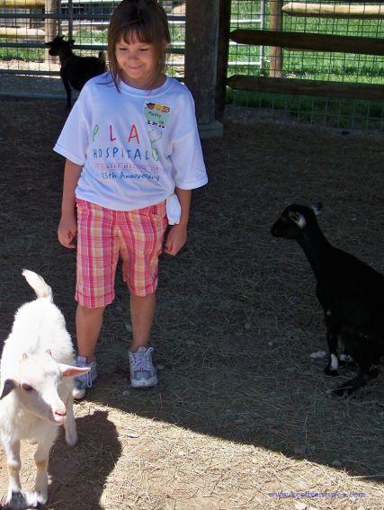 baby-goats-watermark
