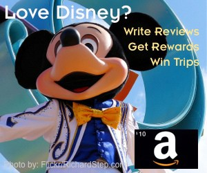 Disney Rewards 300x250