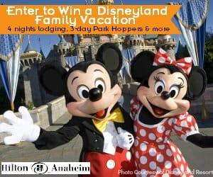 Disneyland Giveaway Banner Ad Blog Disney Giveaways